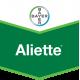 Aliette 80 WG - 20 gr.