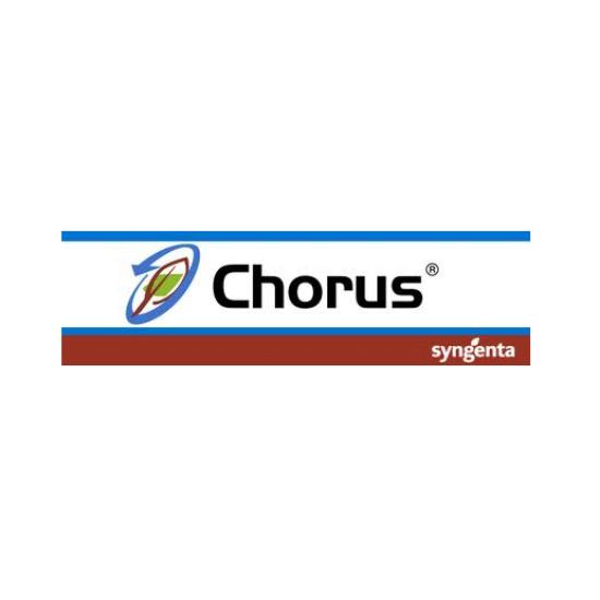 Chorus 50 WG - 45 Gr.