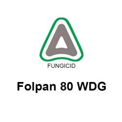 Folpan 80 WDG - 1 KG.