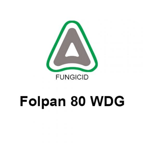 Folpan 80 WDG - 15 gr.