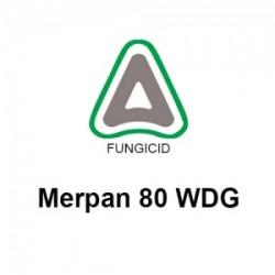 Merpan 80 WDG - 150 gr.
